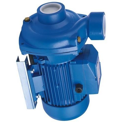 Atos PFG-216 fixed displacement pump