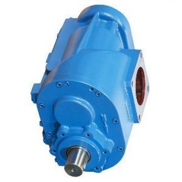 Daikin VZ63C14RJPX-10 Piston Pump