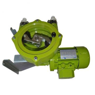 Vickers 4525V50A17-1CC22R Double Vane Pump