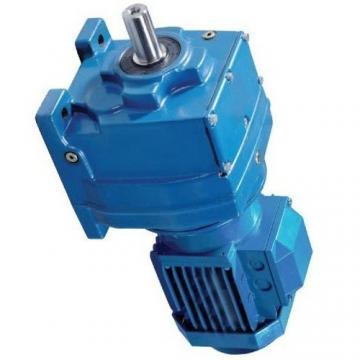 Atos PFG-187 fixed displacement pump