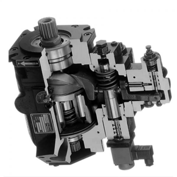 Atos PFE-41029 Vane Pump #1 image
