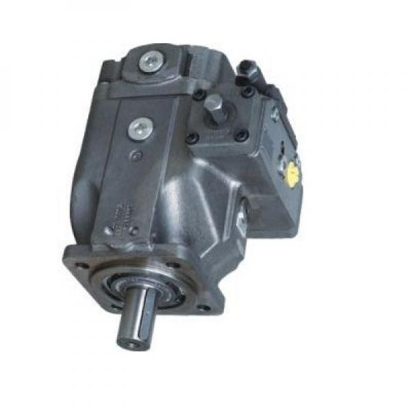 Toko SQP43-75-32-1CC-18 Double Vane Pump #1 image