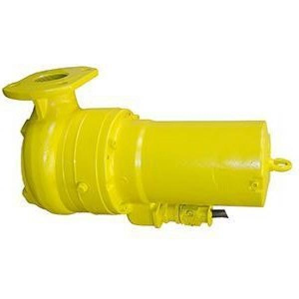Toko P31-38-12-86BB Double Vane Pump #1 image