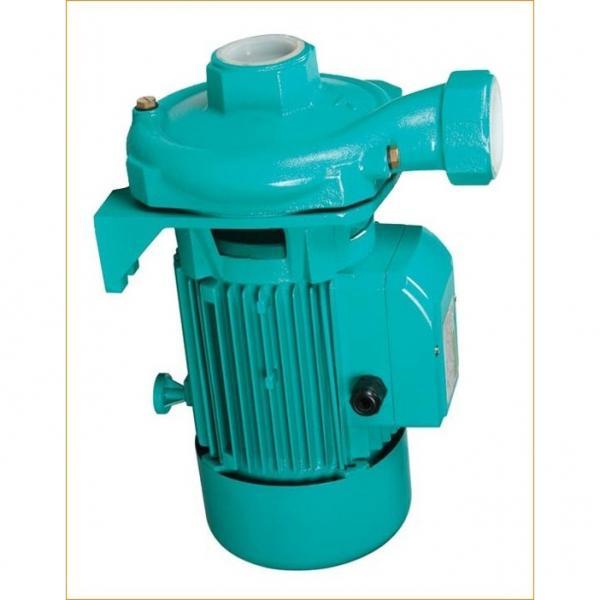 Vickers PVH098R01AJ30A250000002001AB010A PVH Series Variable Piston Pump #1 image