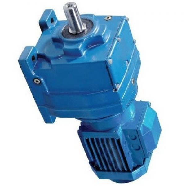 Atos PFG-221 fixed displacement pump #1 image