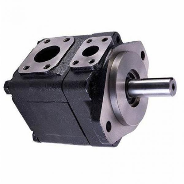Parker PV020R1K1T1NUPD Axial Piston Pump #1 image