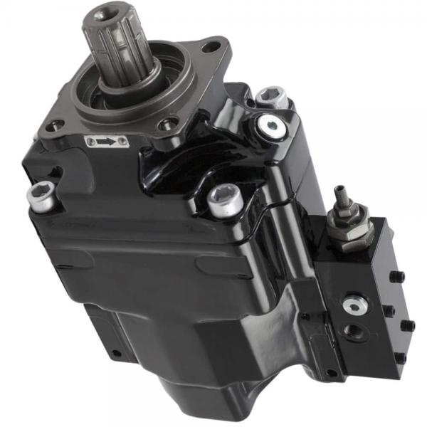 Parker PV023R1K1T1NFDS Axial Piston Pump #1 image