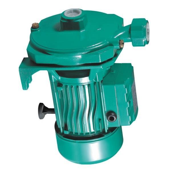 Rexroth A10VSO28DFLR/31R-PPA12K25 Axial Piston Variable Pump #1 image
