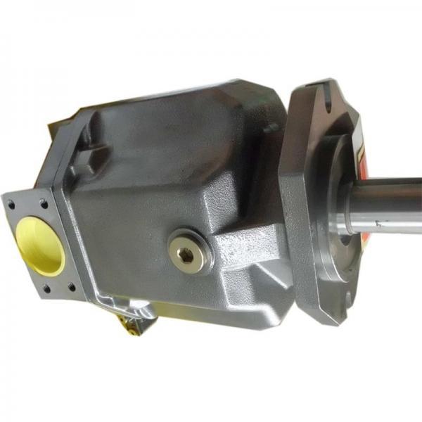 Vickers 3520V25A11-1BB22R Double Vane Pump #1 image