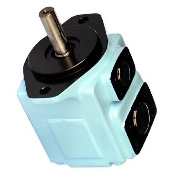 Yuken PV2R23-53-76-F-RAAA-41 Double Vane Pumps #1 image