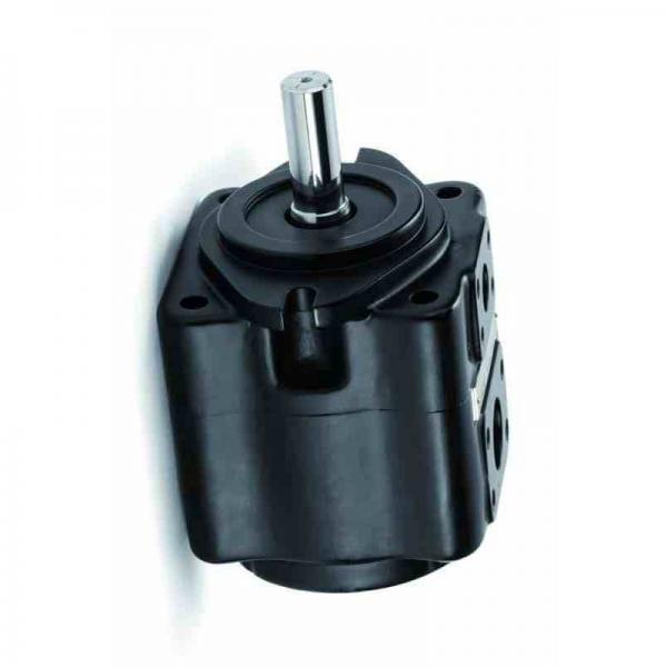 Yuken PV2R23-33-94-F-RAAA-41 Double Vane Pumps #1 image